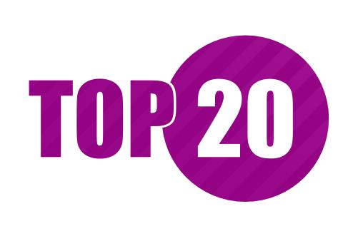 Top 20 companii prahovene in 2014