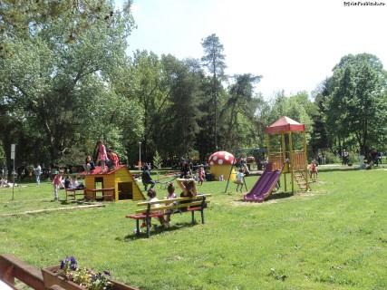Copiii sunt invitati la Foisorul din gradina zoologica!