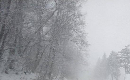 Informare meteorologică de vânt, ninsori și ger