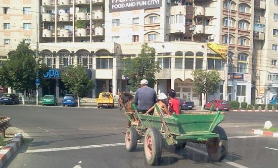 Primaria vrea să interzica accesul carutelor in Ploiesti
