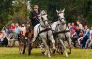 Karpatia Horse Show implineste 5 ani; Spectacol la Floresti, pe Domeniul Cantacuzino