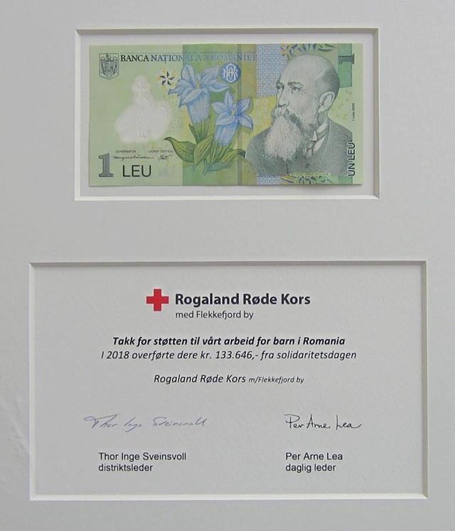 Parteneriat Norvergia-România cu roade bune în Prahova, prin intermediul Crucii Roșii