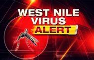 ALERTA! Acum, la final de sezon, caz de infectie cu virusul West Nile in PRAHOVA!