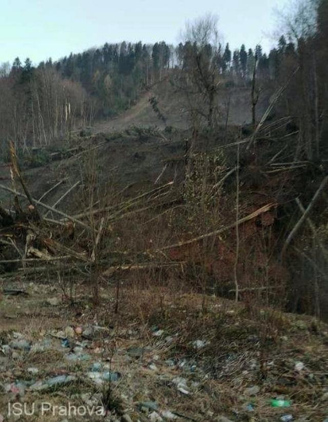 ALERTA: 20 de familii evacuate la Azuga dupa ce o padure… a luat-o la vale!