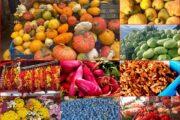 Daca ne-am pune in starea de a aprecia la justa valoare bunii gospodari si produsele traditionale…