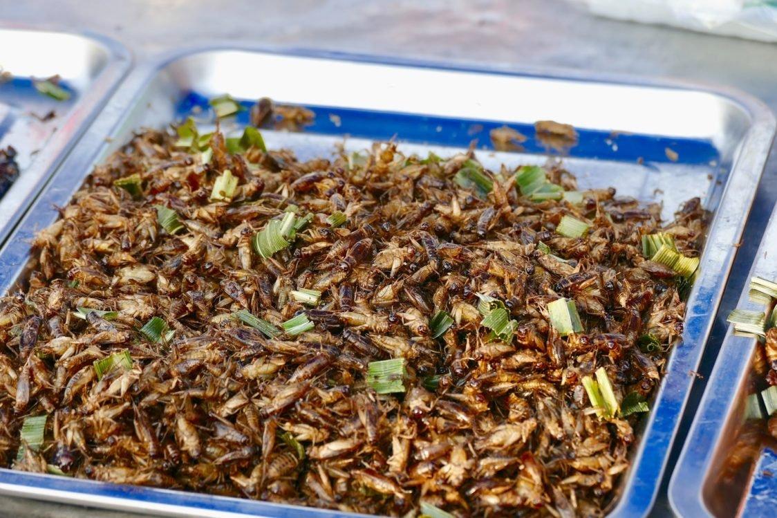 Europenii vor putea manca insecte!