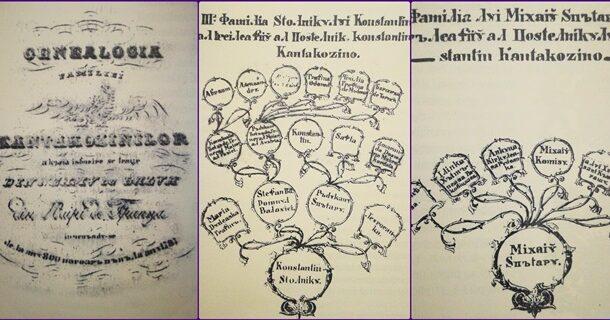 Lectie de istorie pentru prahovenii de azi si de maine: Genealogia Cantacuzinilor